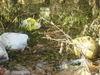 zákoutí s odpadky u Nakléřova
